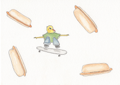 Skateboards are Okay, but Hotdogs...